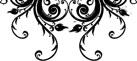 swish-under-tint