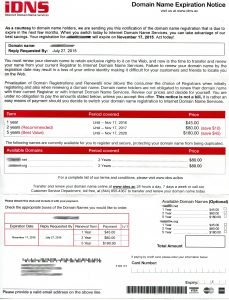 iDNS-Internet-Domain-Name-Service-invoice